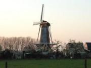 Voorbeeld afbeelding van Bezienswaardigheid Korenmolen Rijn & Weert in Werkhoven