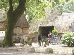 Vergrote afbeelding van Restaurant Pannenkoekboerderij 't Hoes van Hol-an in Aalden